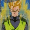 Dragon Ball Z (4)