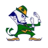 Saint Patrick's Day - Fighting Irish Leprechaun